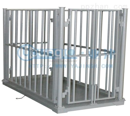 10T动物秤碳钢上海地磅